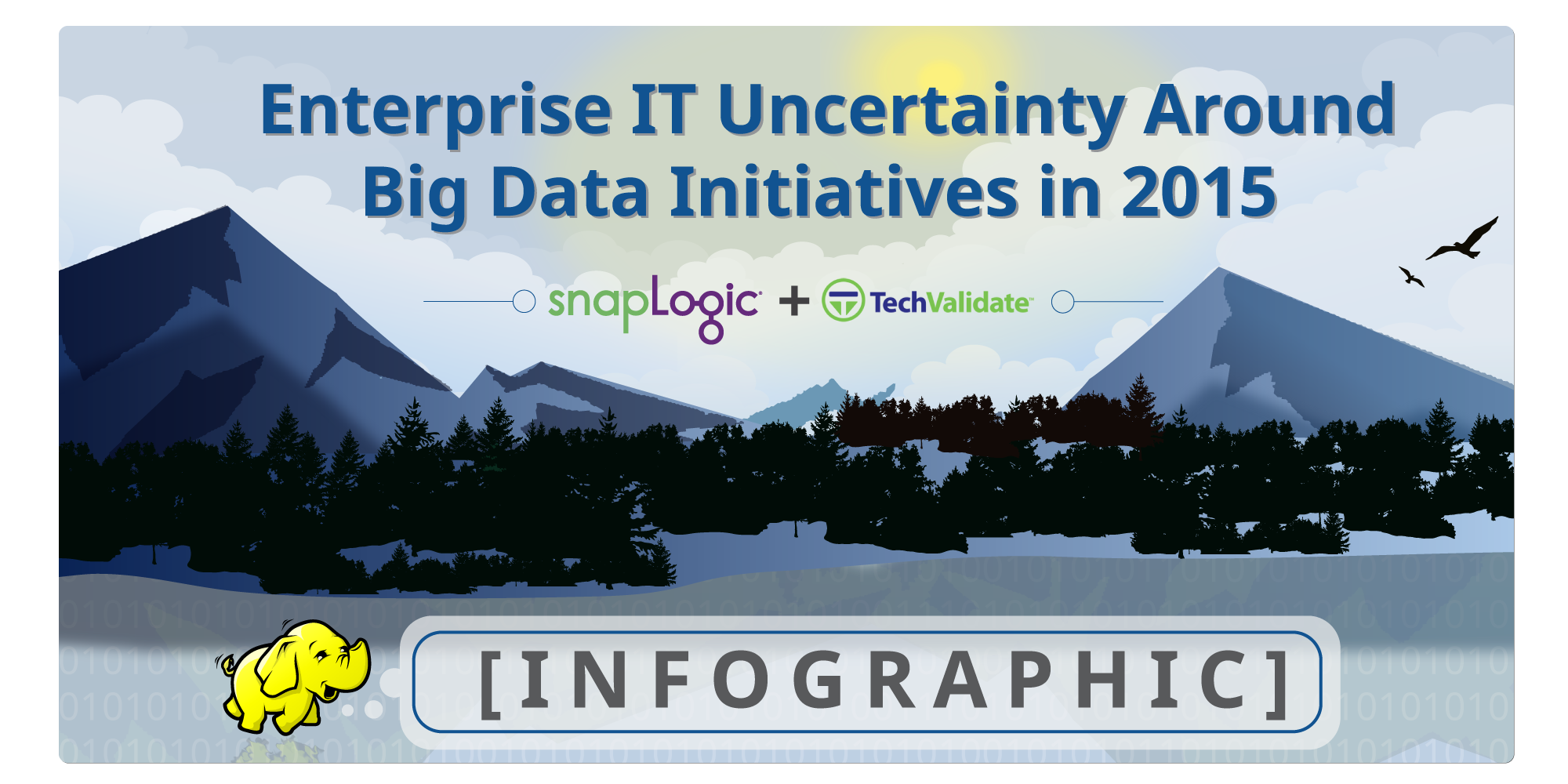Enterprise IT Uncertainty Around Big Data Initiatives