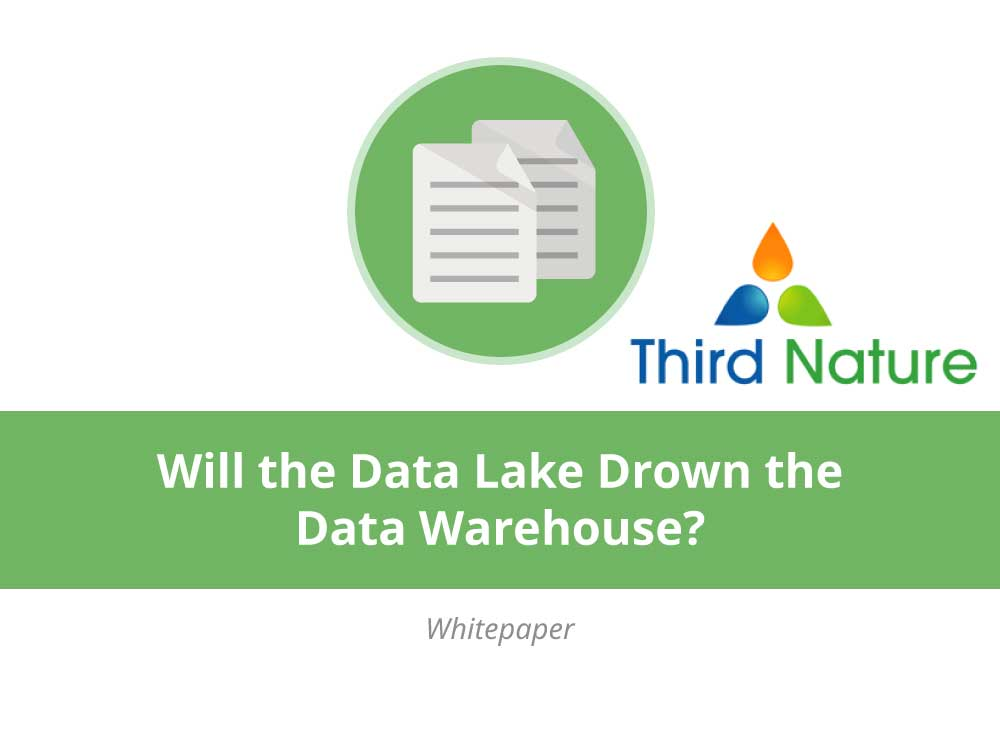 Will the Data Lake Drown the Data Warehouse?
