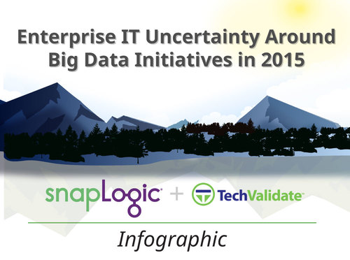 Infographic: Enterprise IT Uncertainty Around Big Data Initiatives in 2015