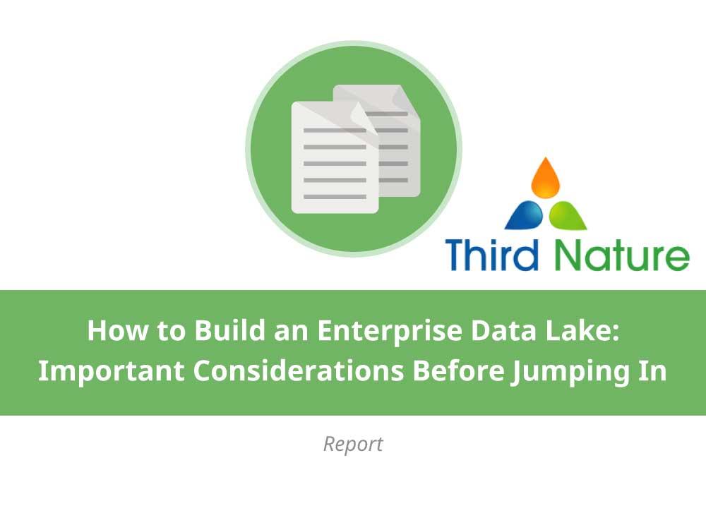 How to Build an Enterprise Data Lake